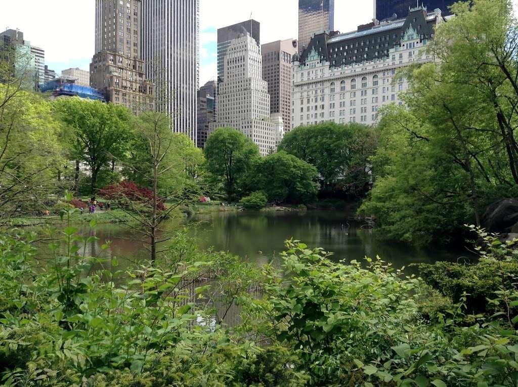 The Lake Viewing Area - park    Photo 1 of 10   Address: New York, NY 10024, USA