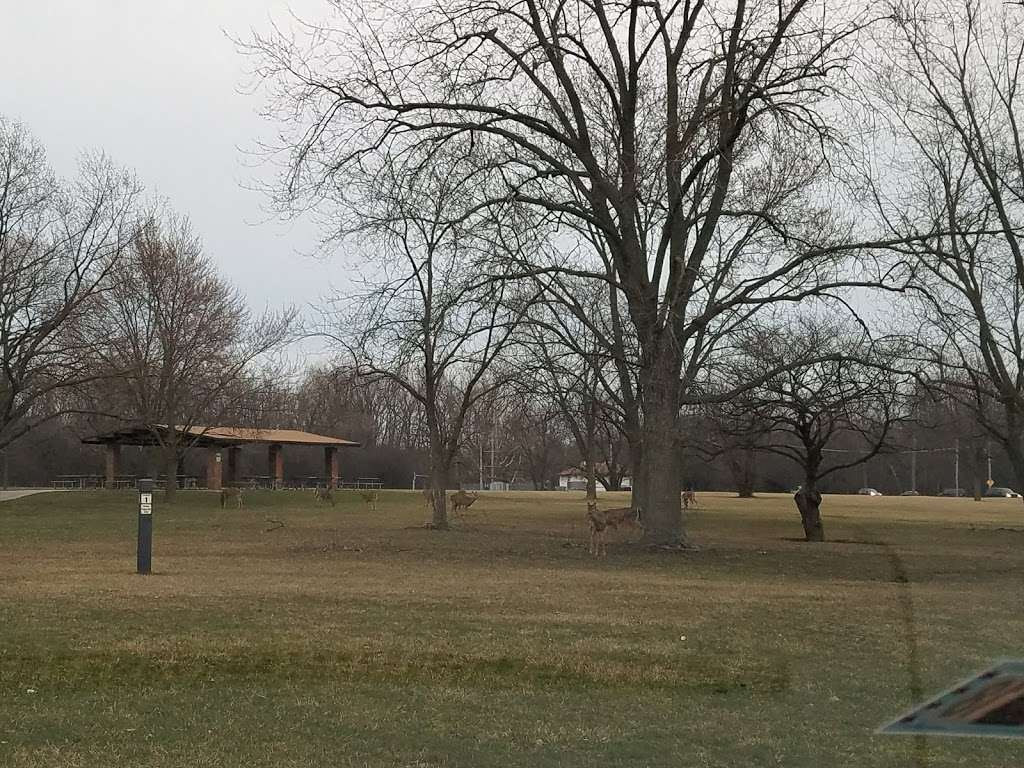 Jerome Huppert Woods Picnic Grove - park  | Photo 3 of 10 | Address: 2002 Thatcher Ave, River Grove, IL 60171, USA