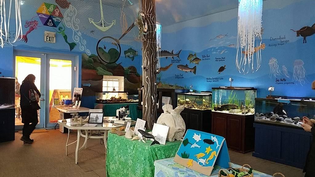Glen Echo Park Aquarium - aquarium    Photo 2 of 9   Address: 7300 Macarthur Blvd, Glen Echo, MD 20812, USA   Phone: (301) 955-6256