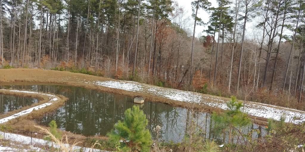 Van Brodie Properties - real estate agency  | Photo 2 of 4 | Address: 1537 Fullerton Pl, Raleigh, NC 27607, USA | Phone: (919) 210-7745