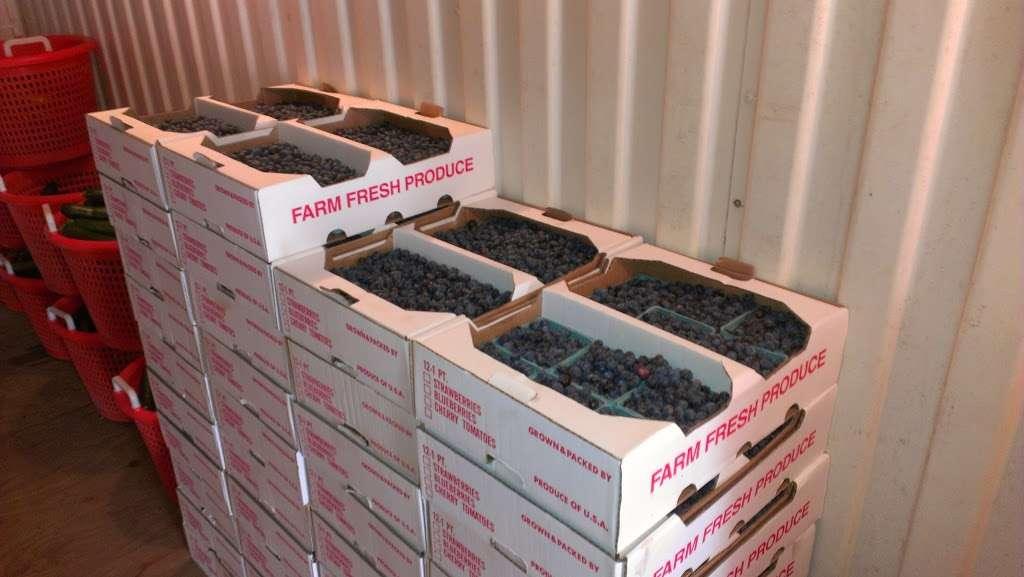 Fruitwood Farms, Inc. - store  | Photo 7 of 10 | Address: 419 Elk Rd, Monroeville, NJ 08343, USA | Phone: (856) 881-7748