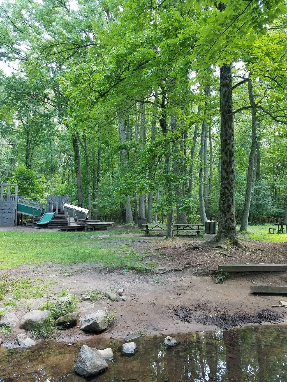 Flat Rock Brook Nature Center - park  | Photo 2 of 10 | Address: 288 Jones Rd, Englewood, NJ 07631, USA