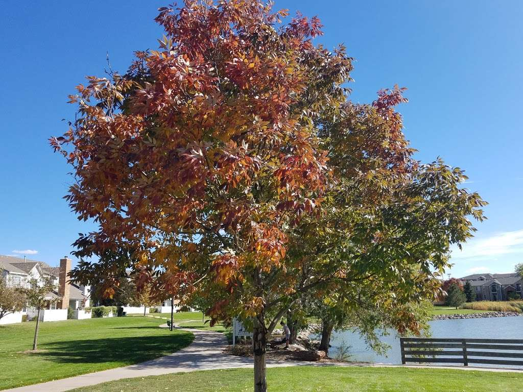 Hunters Glen Lake Park - park    Photo 7 of 10   Address: Thornton, CO 80241, USA   Phone: (303) 255-7830