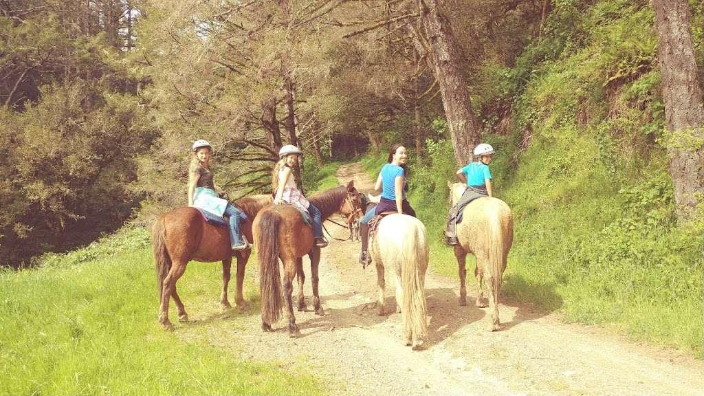 Five Brooks Ranch - travel agency  | Photo 8 of 10 | Address: 8001 CA-1, Olema, CA 94950, USA | Phone: (415) 663-1570