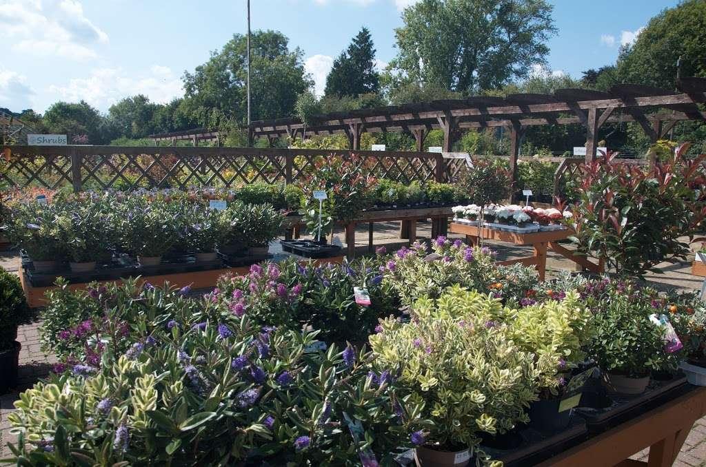 Greenacres - store  | Photo 2 of 10 | Address: Borough Green Road, Ightham, Sevenoaks TN15 9HS, UK | Phone: 01732 884726
