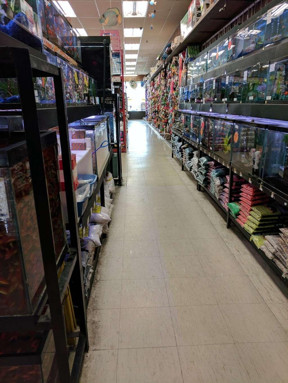 Petland Discounts - Jersey City - pet store  | Photo 6 of 10 | Address: Rt 440 & Kellogg Street, Stadium Plaza, Jersey City, NJ 07305, USA | Phone: (201) 435-9217