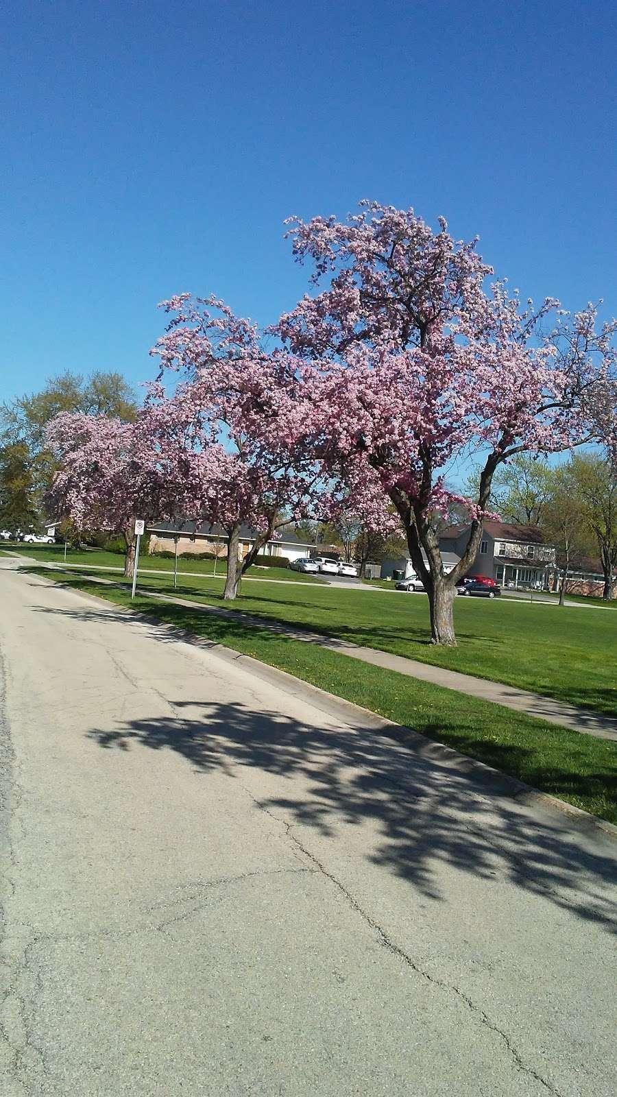 Chino Park - park  | Photo 3 of 10 | Address: 630 Illinois Blvd, Hoffman Estates, IL 60169, USA | Phone: (847) 885-7500