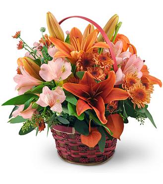 Jerome Florist & Gifts - florist    Photo 9 of 10   Address: 3724 E Tremont Ave, Bronx, NY 10465, USA   Phone: (718) 931-9440