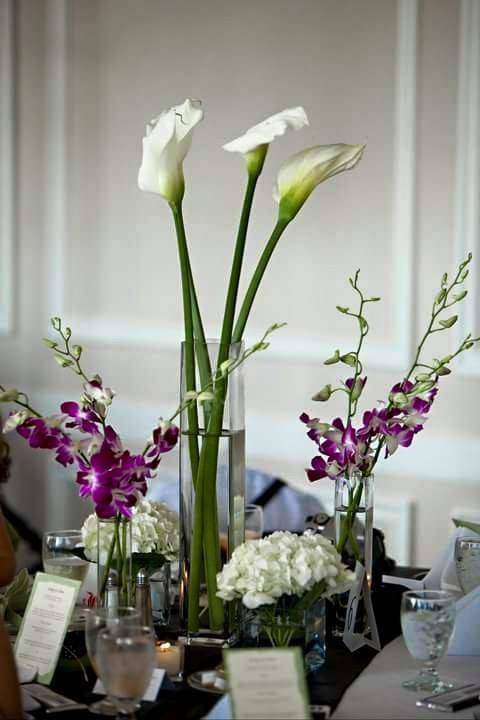 Primavera Florist Pedro - florist  | Photo 9 of 10 | Address: 5510 W Flagler St, Coral Gables, FL 33134, USA | Phone: (305) 447-4660