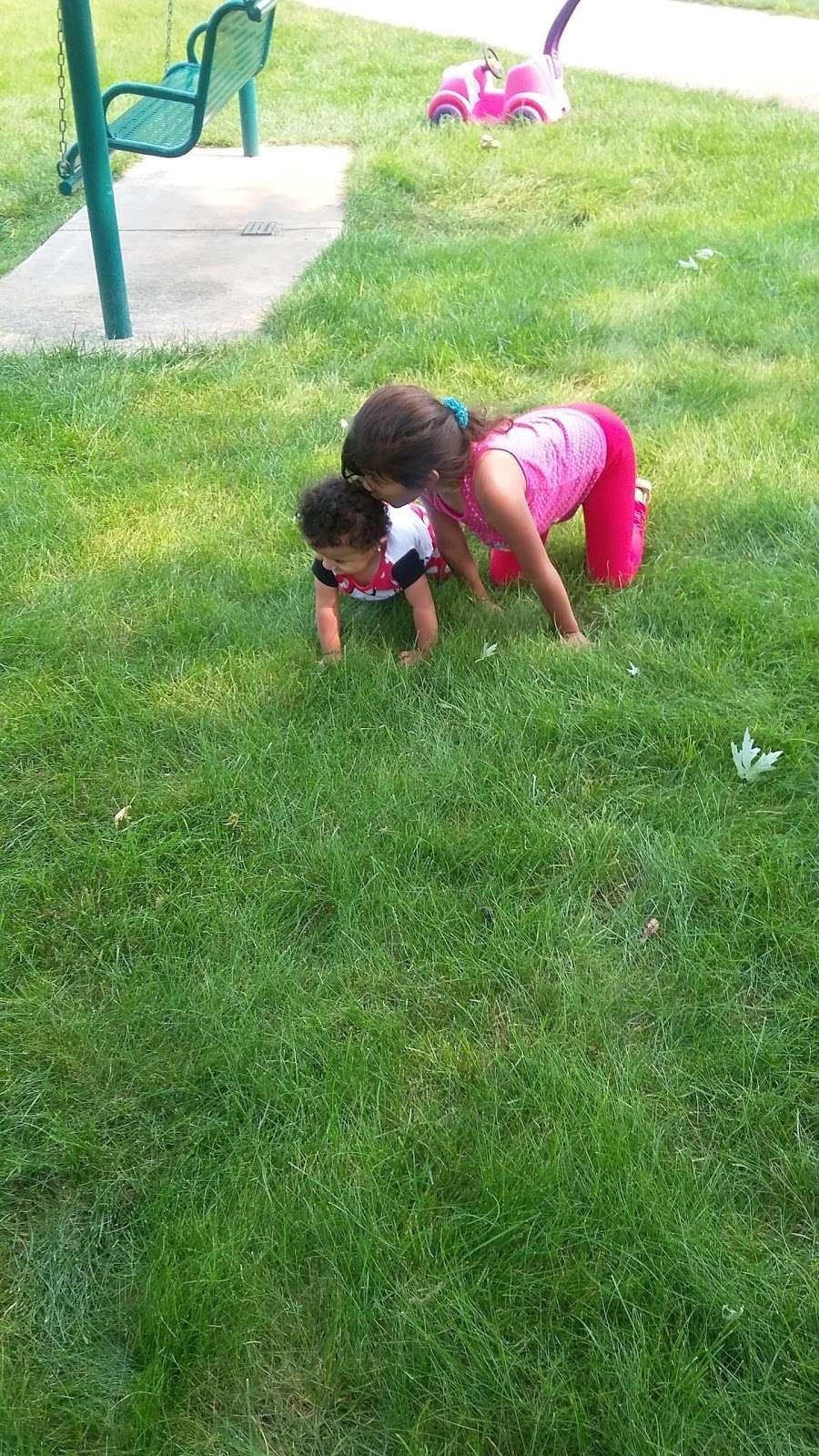 Turtle Hill Park - park  | Photo 9 of 10 | Address: Turtle St, Shorewood, IL 60404, USA