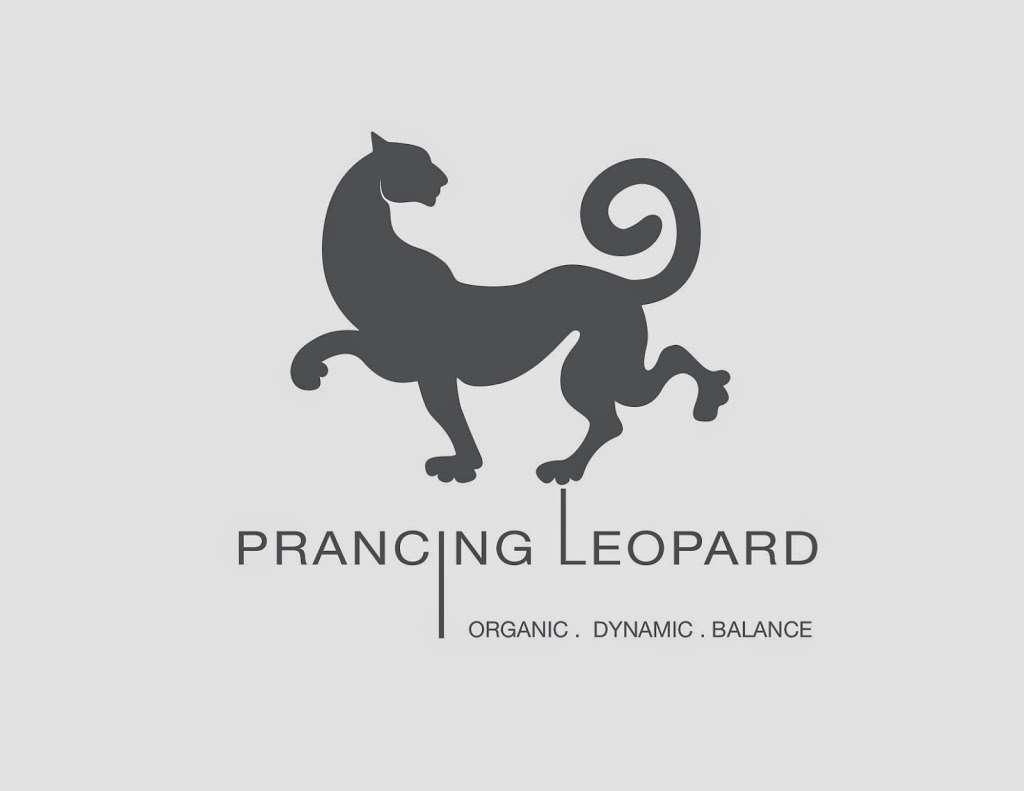Prancing Leopard Organics - clothing store  | Photo 3 of 3 | Address: 481 Van Brunt St, Brooklyn, NY 11231, USA | Phone: (800) 692-8110
