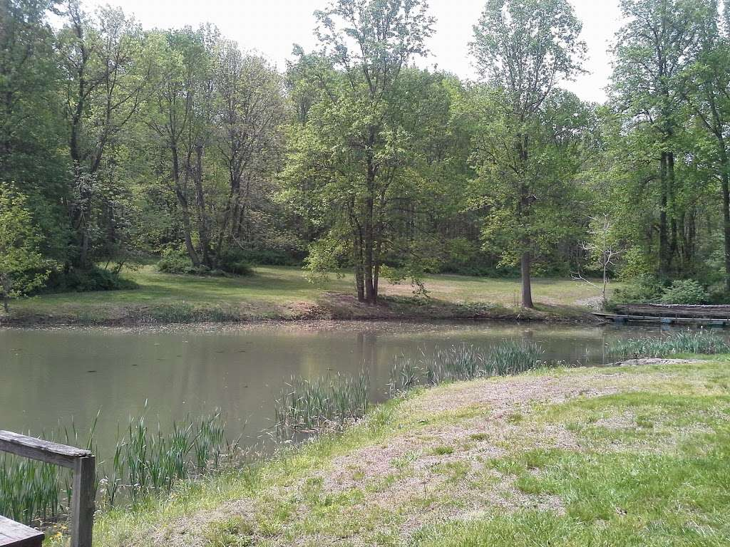 Camp Ramblewood - health  | Photo 8 of 10 | Address: 2564 Silver Rd, Darlington, MD 21034, USA | Phone: (410) 457-4228