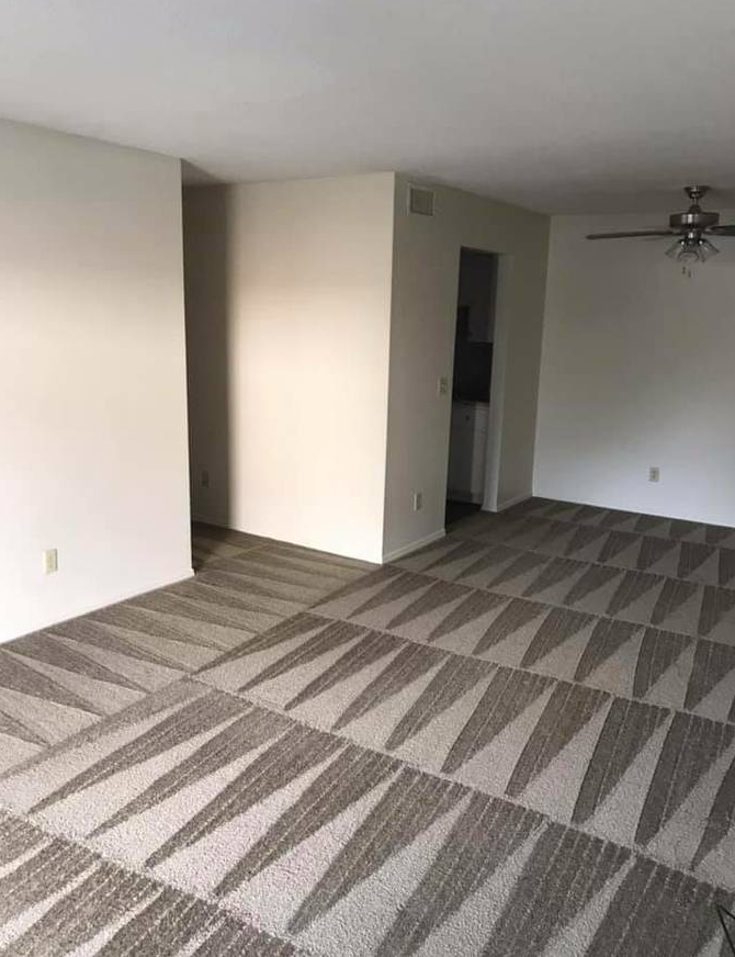 Mar Vista Carpet & Upholstery Cleaning - laundry  | Photo 1 of 2 | Address: 11412 Venice Blvd, Los Angeles, CA 90066, USA | Phone: (424) 228-8266
