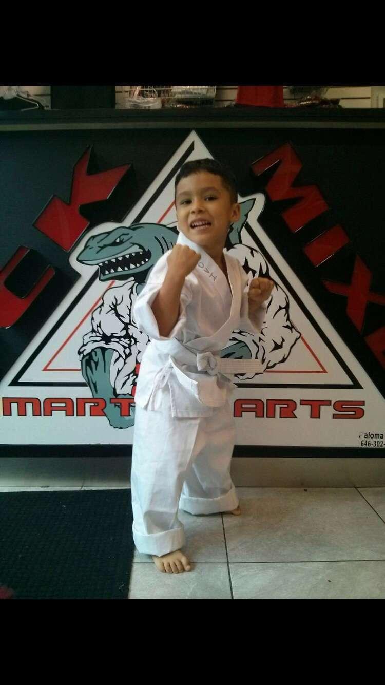 TCK Mixed Martial Arts - health  | Photo 8 of 8 | Address: 2955 Webster Ave, Bronx, NY 10458, USA | Phone: (718) 542-8622