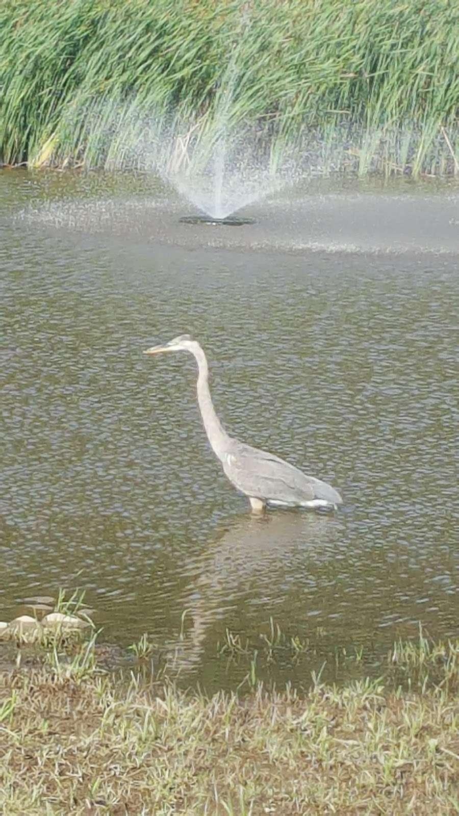 Park at 4th - park  | Photo 5 of 10 | Address: Quakertown, PA 18951, USA | Phone: (215) 536-5001