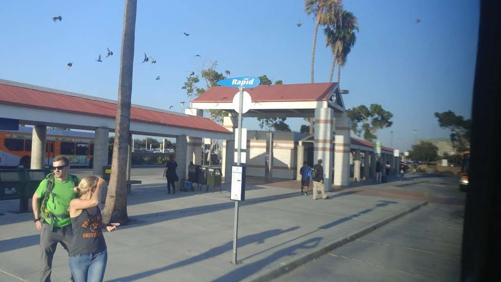 LAX City Bus Center - bus station  | Photo 8 of 10 | Address: West 96th Street, Los Angeles, CA 90045, USA