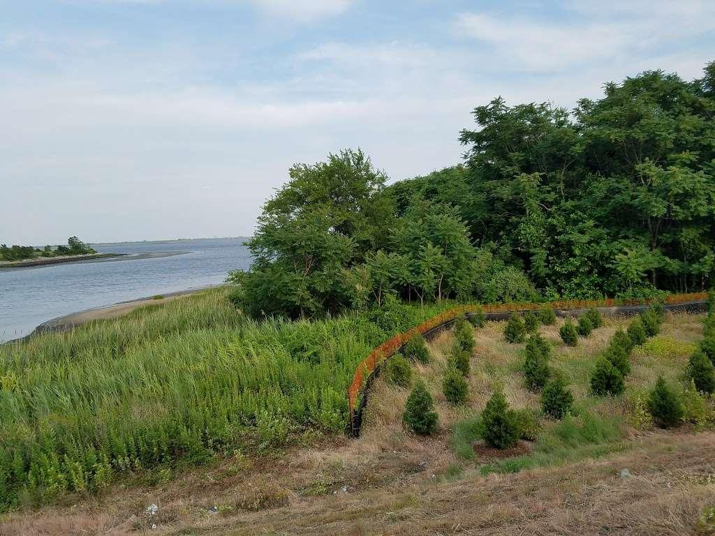 Starrett City Park - park    Photo 1 of 10   Address: Brooklyn, NY 11239, USA   Phone: (212) 360-2778