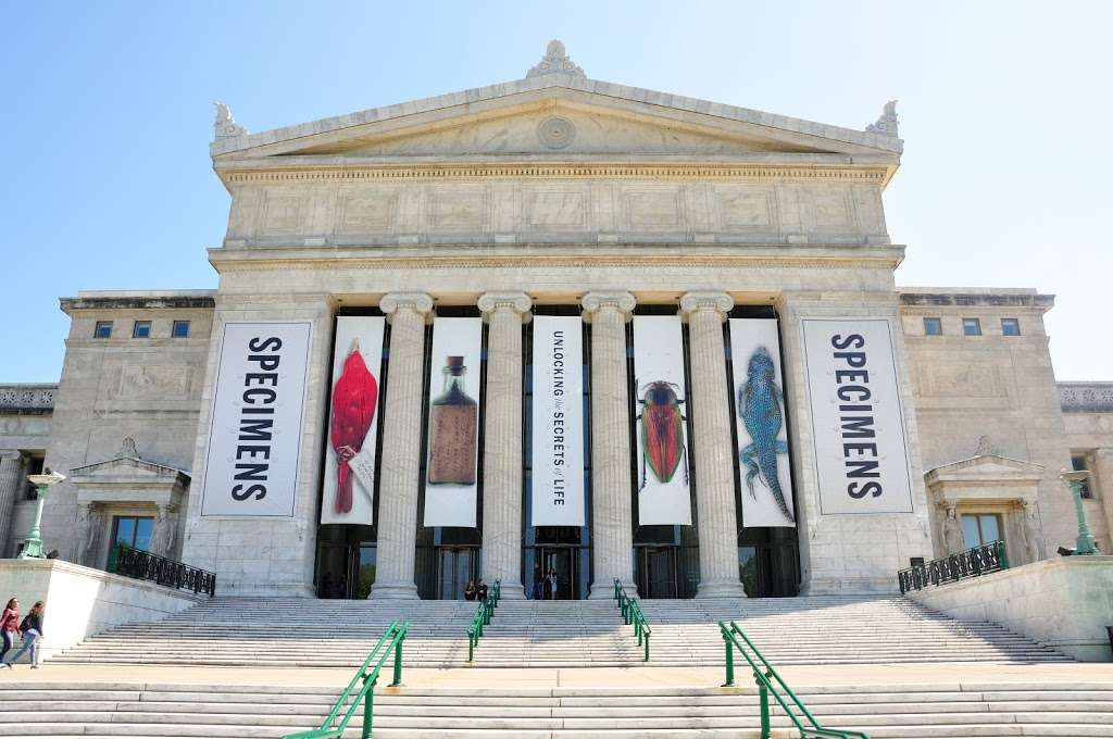 The Field Museum - museum  | Photo 1 of 10 | Address: 1400 S Lake Shore Dr, Chicago, IL 60605, USA | Phone: (312) 922-9410