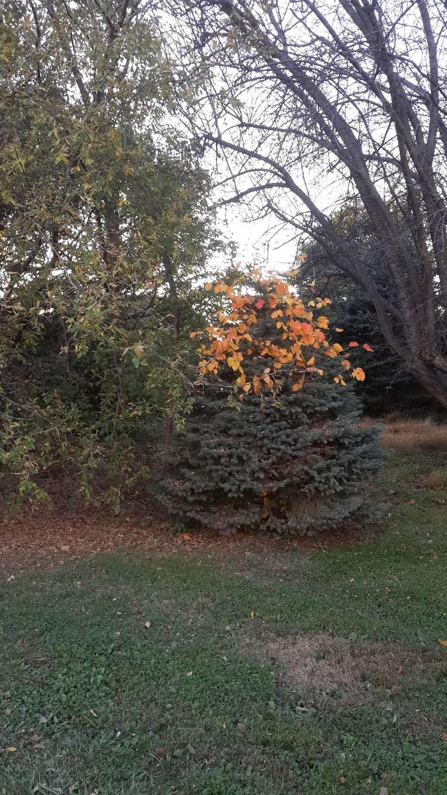 Golden Spa - spa  | Photo 9 of 10 | Address: 2024 Sullivan Trail, Easton, PA 18040, USA | Phone: (610) 879-0053