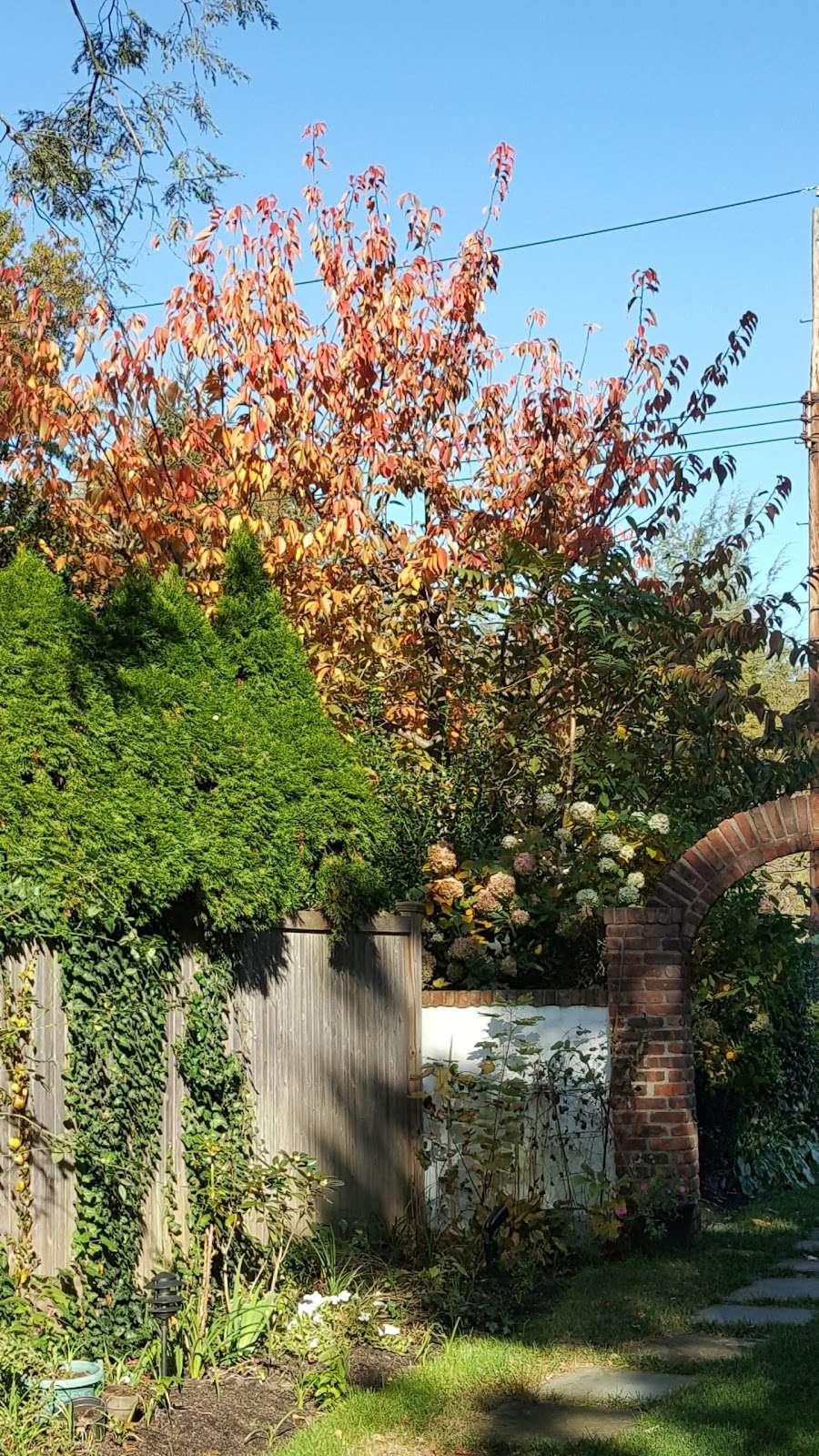 Bronxville Dog Park - park    Photo 9 of 10   Address: Grove Ln, Bronxville, NY 10708, USA