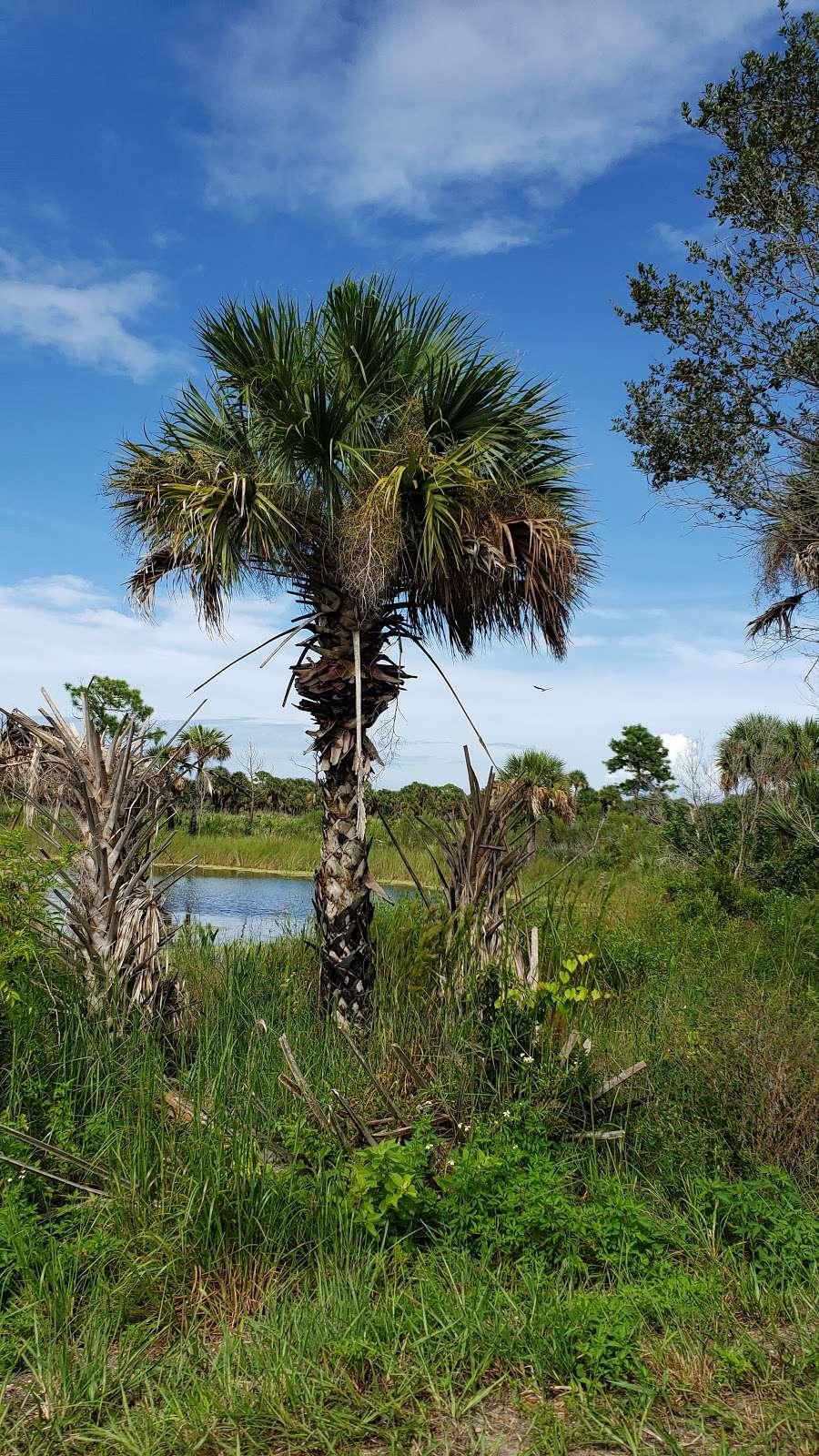 Blackpoint Wildlife Drive Entrance - park  | Photo 4 of 10 | Address: Blackpoint Wildlife Dr, Titusville, FL 32796, USA