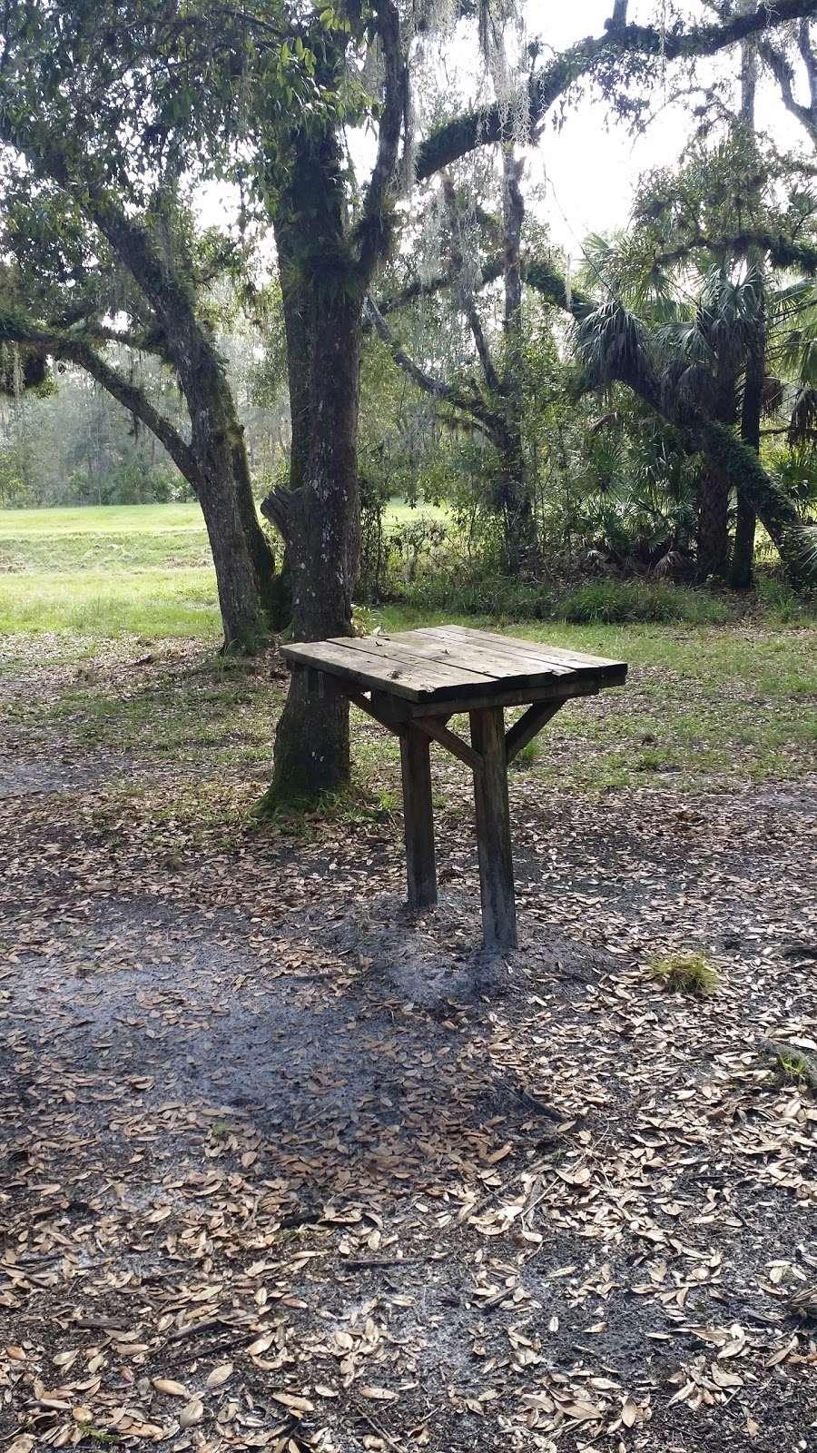 White Loop Group Campsite - campground  | Photo 3 of 5 | Address: Orlando, FL 32833, USA | Phone: (386) 329-4404