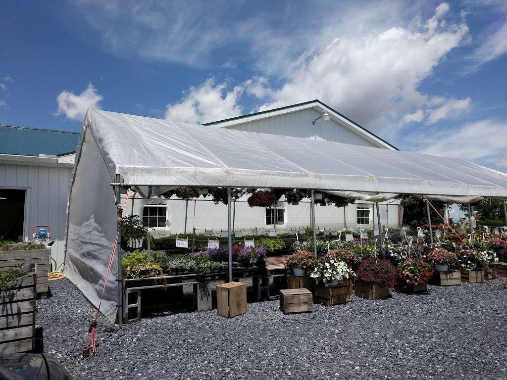 Hess Orchards - store  | Photo 5 of 10 | Address: 3793, 3979 Wayne Rd, Chambersburg, PA 17202, USA | Phone: (717) 264-8872