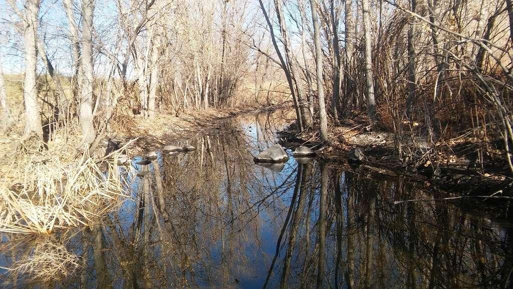 Carpio Sanguinette Park - park  | Photo 5 of 10 | Address: 1400 53rd Ave, Denver, CO 80216, USA | Phone: (720) 913-1311