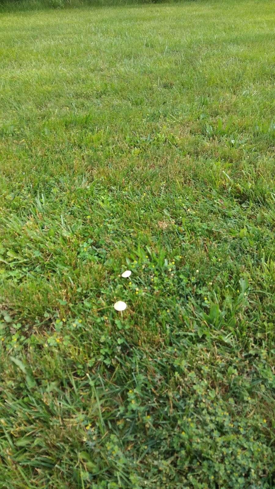 Park at 4th - park  | Photo 6 of 10 | Address: Quakertown, PA 18951, USA | Phone: (215) 536-5001