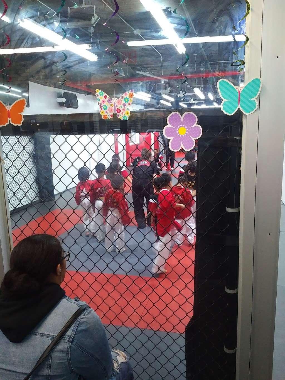 TCK Mixed Martial Arts - health  | Photo 3 of 8 | Address: 2955 Webster Ave, Bronx, NY 10458, USA | Phone: (718) 542-8622