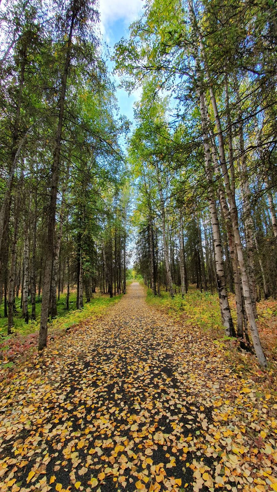 Arnold L. Muldoon Park - park  | Photo 4 of 8 | Address: 7600 E Northern Lights Blvd, Anchorage, AK 99504, USA | Phone: (907) 343-4355
