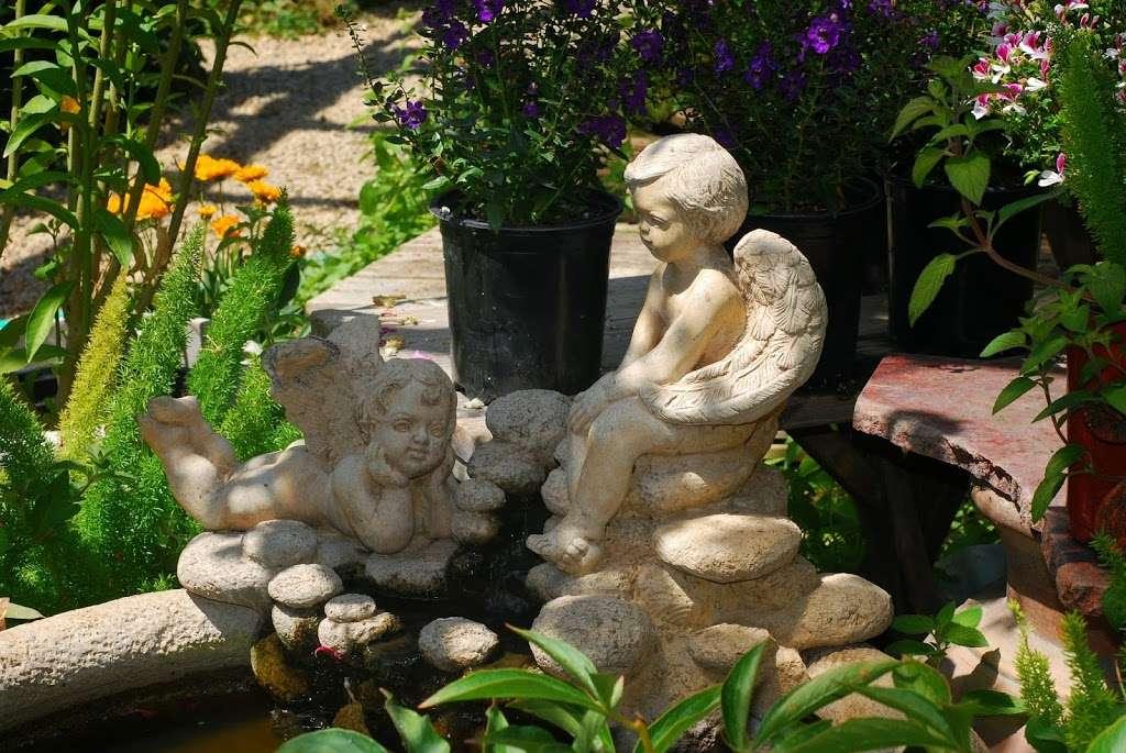 Plant Works - florist  | Photo 5 of 10 | Address: 7945 Hwy 9, Ben Lomond, CA 95005, USA | Phone: (831) 336-2212
