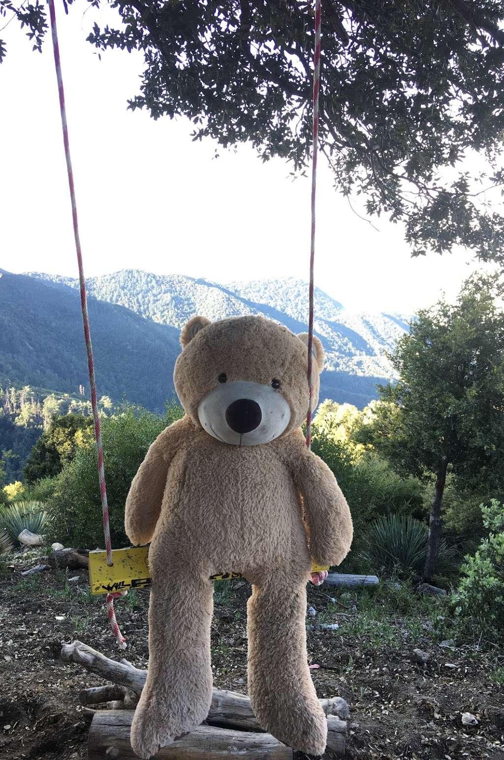 Secret Swings Mount Wilson - park  | Photo 1 of 10 | Address: Mt Wilson Circle Road, Pasadena, CA 91107, USA