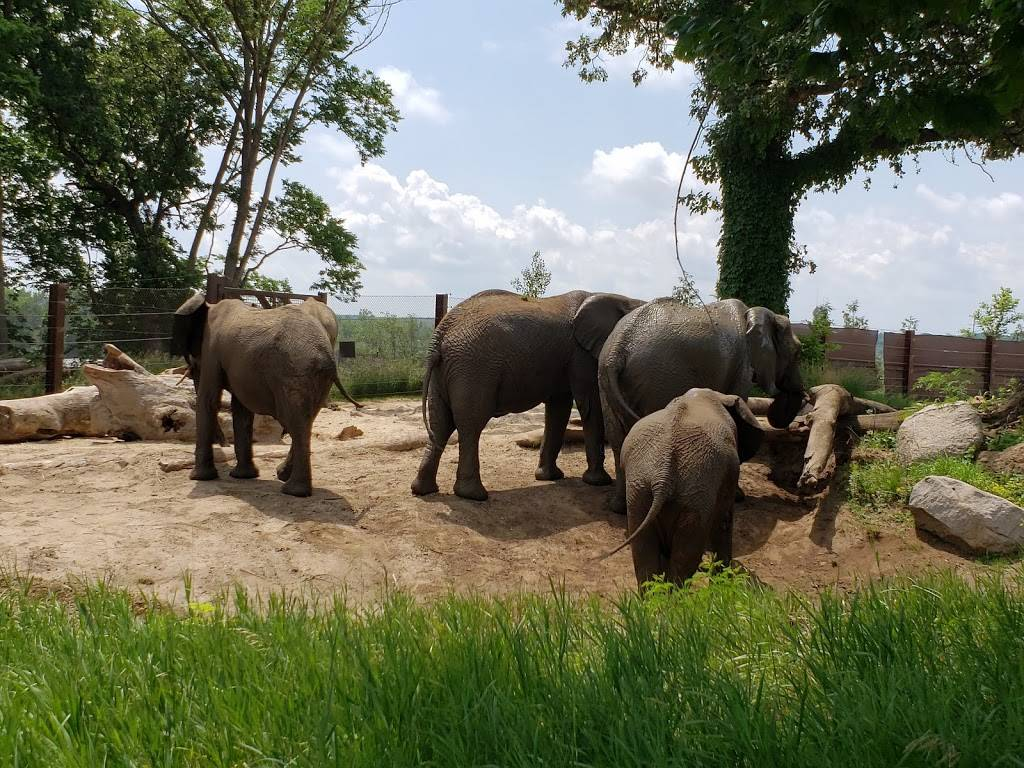 Omaha Zoo South (Main) Entrance - zoo    Photo 4 of 10   Address: 3701 S 10th St, Omaha, NE 68107, USA   Phone: (402) 733-8401