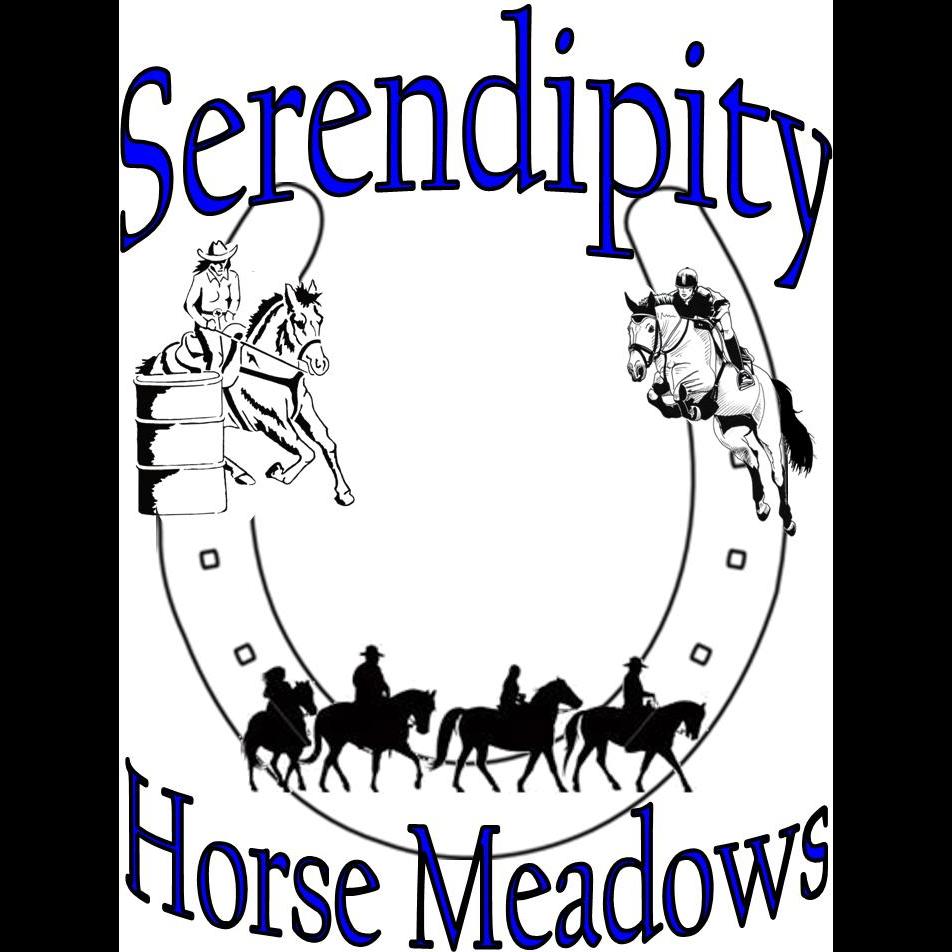 Serendipity Horse Meadows Farm - travel agency  | Photo 2 of 2 | Address: 17907 Spielman Rd, Fairplay, MD 21733, USA | Phone: (301) 514-5671