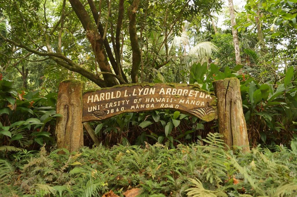 Lyon Arboretum - park    Photo 1 of 9   Address: 3860 Manoa Rd, Honolulu, HI 96822, USA   Phone: (808) 988-0456