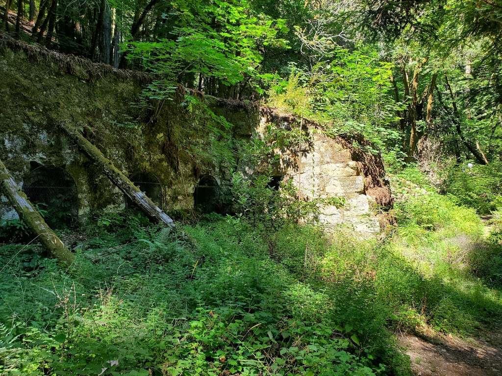 Old Lime Kiln Ruins - park  | Photo 1 of 10 | Address: Fall Creek Trail, Felton, CA 95018, USA