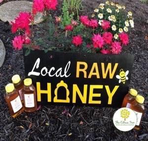 The Citrus Tree - home goods store  | Photo 7 of 8 | Address: 10031 Corbett Rd, Cincinnati, OH 45231, USA | Phone: (513) 313-3638
