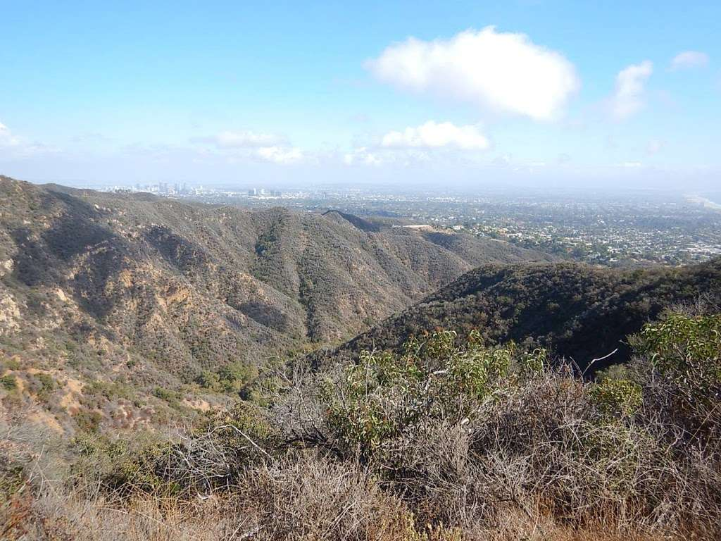 Viewpoint at Temescal Ridge Trail - park  | Photo 2 of 10 | Address: Temescal Ridge Trail, Pacific Palisades, CA 90272, USA