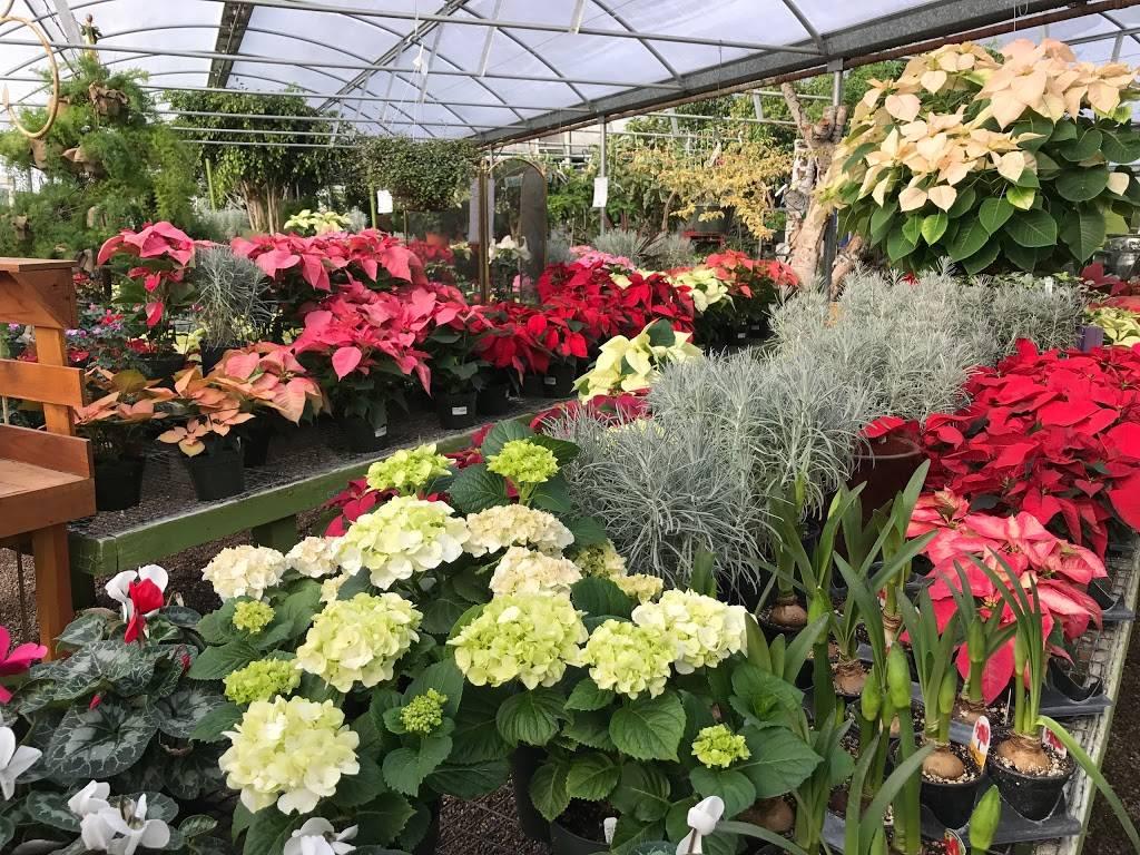 Edwards Greenhouse - florist  | Photo 4 of 10 | Address: 4106 Sand Creek St, Boise, ID 83703, USA | Phone: (208) 342-7548
