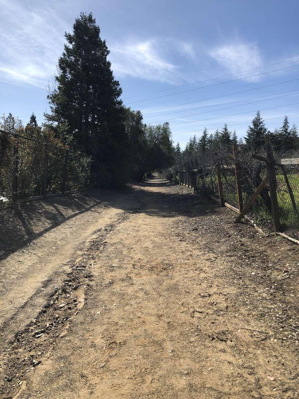 Trailhead - park    Photo 4 of 8   Address: Prospect Rd, Cupertino, CA 95014, USA