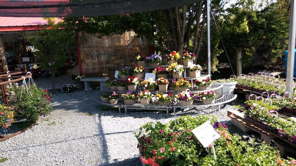 Hahns Greenhouse - store  | Photo 5 of 6 | Address: 2132 N Sage Rd, Walkerton, IN 46574, USA | Phone: (574) 586-3097