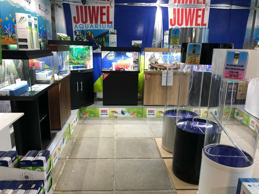 BRENTWOOD AQUATICS - pet store  | Photo 1 of 10 | Address: Ongar Rd, Kelvedon Hatch, Brentwood CM15 0JX, UK | Phone: 01277 295488