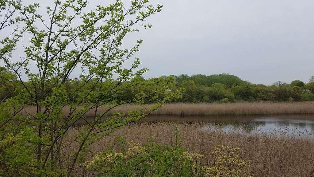 Ridgewood Reservoir - park    Photo 4 of 9   Address: Jackie Robinson Pkwy, Brooklyn, NY 11208, USA   Phone: (212) 639-9675