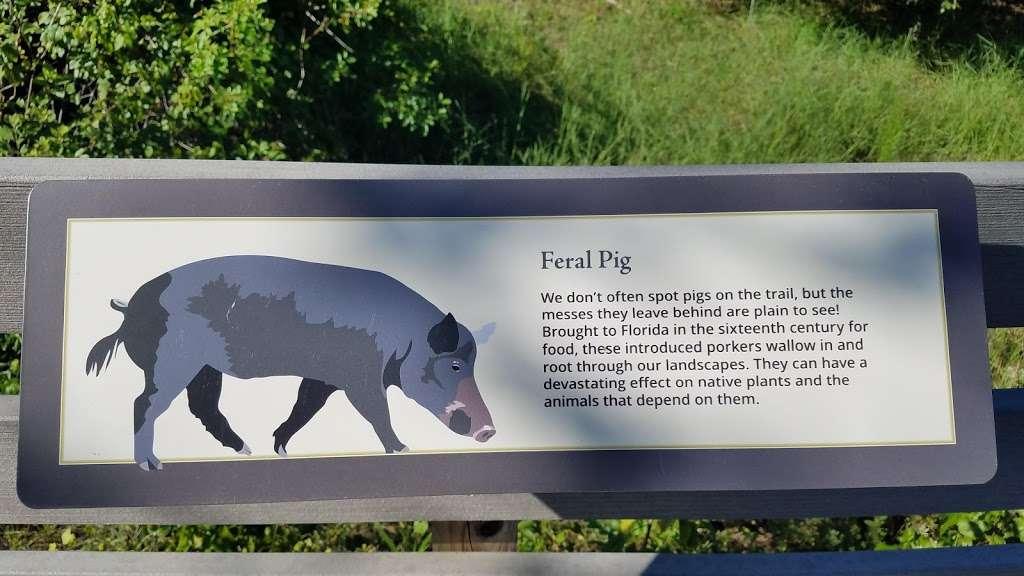 Brevard Zoo Linear Park - park    Photo 3 of 10   Address: 28°13′18.6″N 80°42′51.1, West Dr, Melbourne, FL 32940, USA