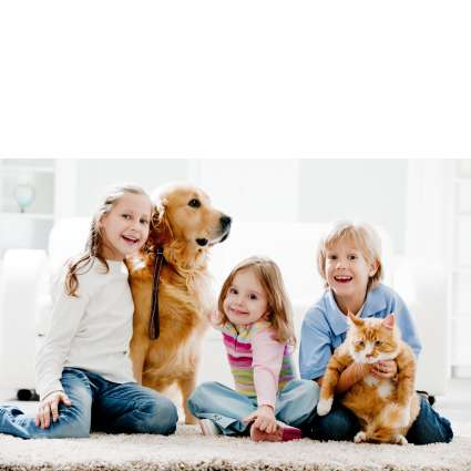 Advanced Dry Carpet Care - laundry  | Photo 4 of 10 | Address: 1129 Industrial Ave STE 208, Petaluma, CA 94952, USA | Phone: (707) 575-0114