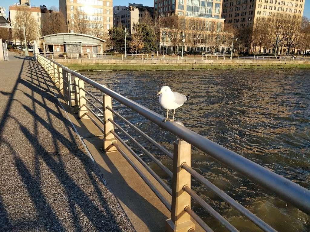 Pier 51 at Hudson River Park - park  | Photo 9 of 10 | Address: Hudson River Greenway, New York, NY 10014, USA | Phone: (212) 627-2020