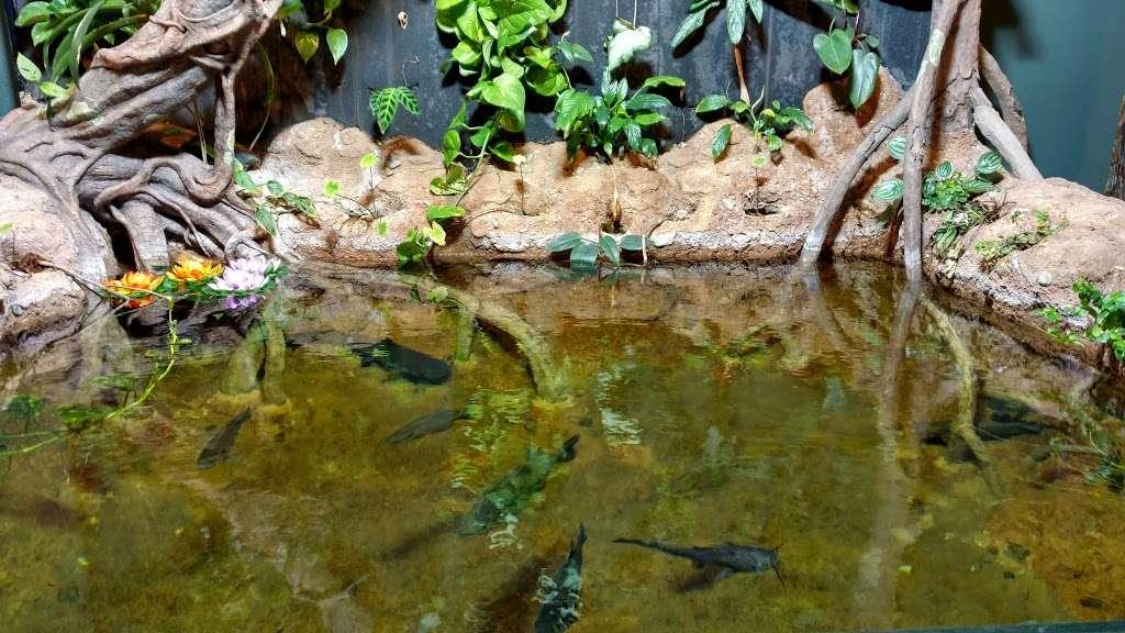 Rizzos Wildlife World - zoo  | Photo 4 of 10 | Address: 1 Gold Mine Rd, Flanders, NJ 07836, USA | Phone: (973) 586-0444