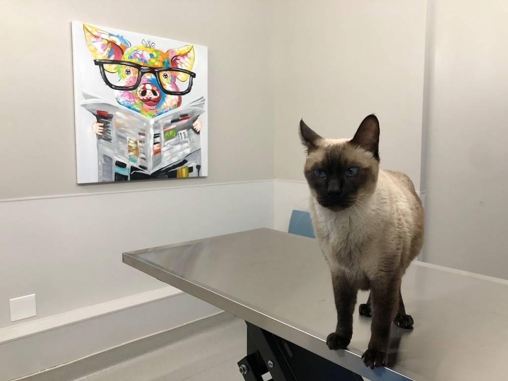 Hoboken Vets Animal Clinic - veterinary care  | Photo 1 of 10 | Address: 1160 Maxwell Ln, Hoboken, NJ 07030, USA | Phone: (201) 559-5133