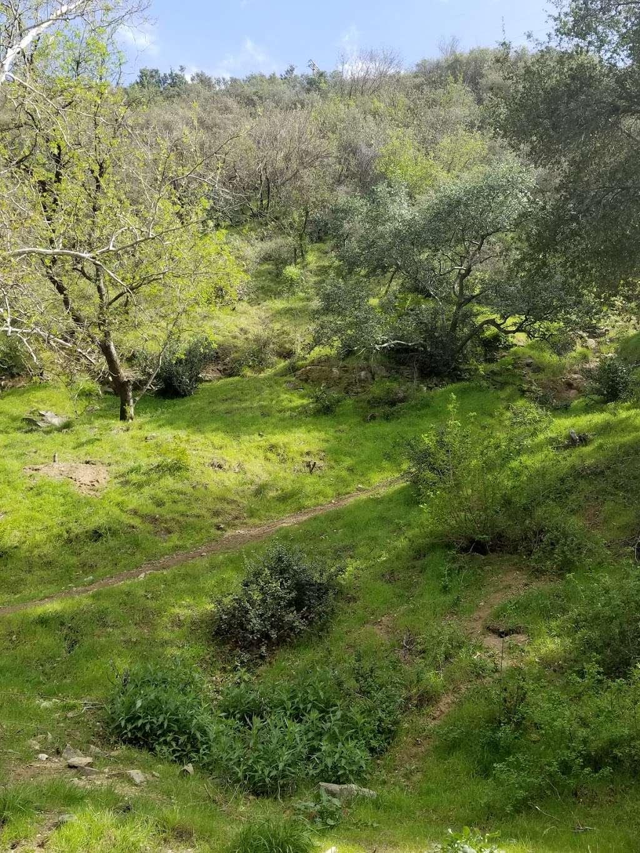 Oaks Picnic Area - park  | Photo 2 of 10 | Address: E Fork Rd, Azusa, CA 91702, USA